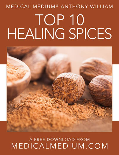 Top 10 Healing Spices